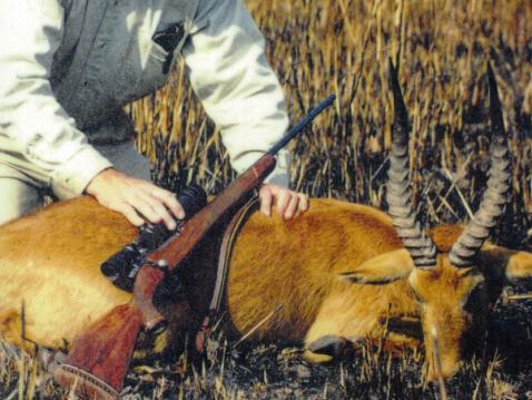 hunt-33-.jpg
